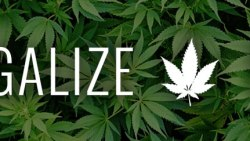 Legalise Itjpg