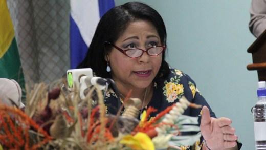 Vilma Reyes Valdespino