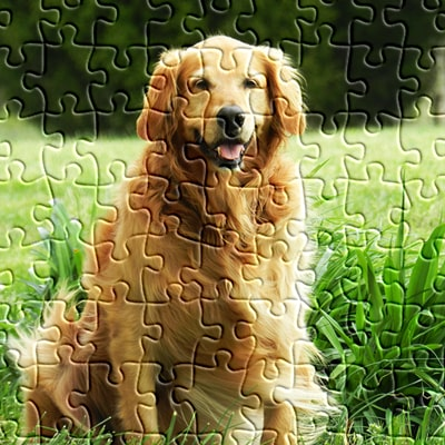 free jigsaw puzzles online at jspuzzles