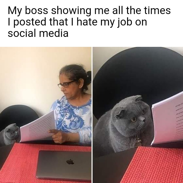 Lady Showing A Cat Papers Meme Template