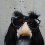 40 Funny Dog Jokes For Kids Of All Ages Care Com