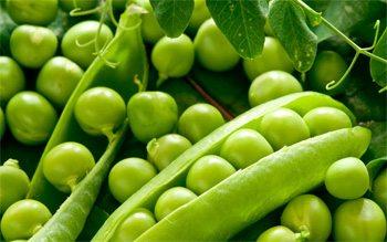 alimentos-altos-en-proteina-23