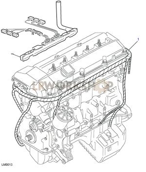 BMW M52 Engine Harness  Land Rover Workshop
