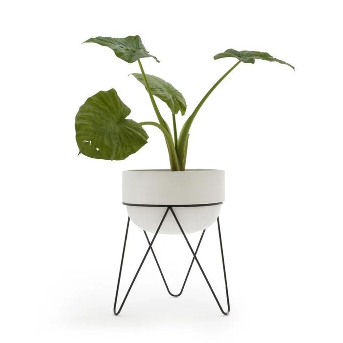 Plantae Ceramic Planter and Stand
