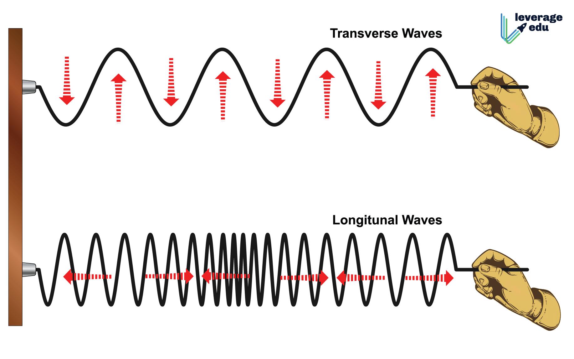 Transverse Vs Longitudinal Wave