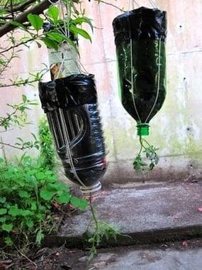 Jardinière à l'envers DIY