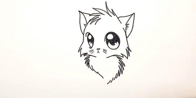 Hogyan kell felhívni egy anime macskát: a zigzagok alján és az időszakos vonalakon, próbálja meg a bolyhos mellet