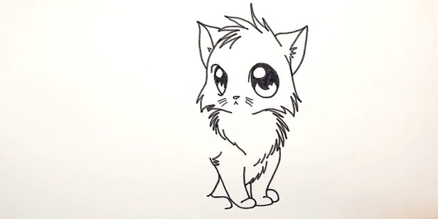 How to draw a cat anime: over the first front paws depict wool