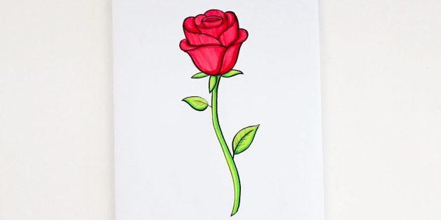 Как нарисовать полураскрытую розу фломастерами и цветными карандашами