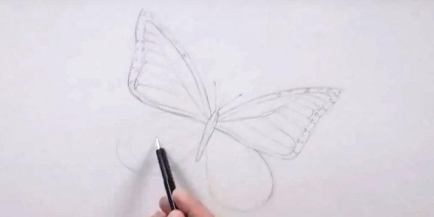 Vẽ cốc dọc theo các cạnh của cánh bên phải và mang theo mô hình cánh bên trái
