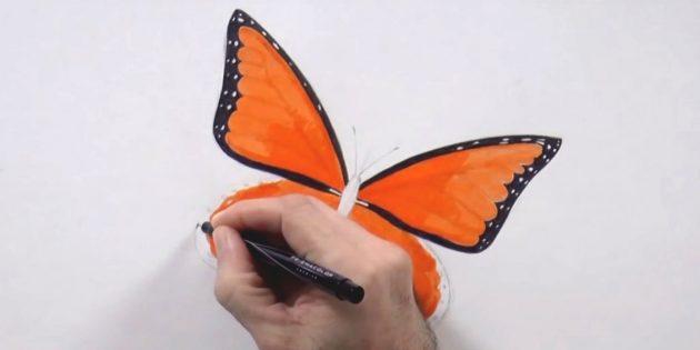 Черным цветом закрасьте края верхних крыльев