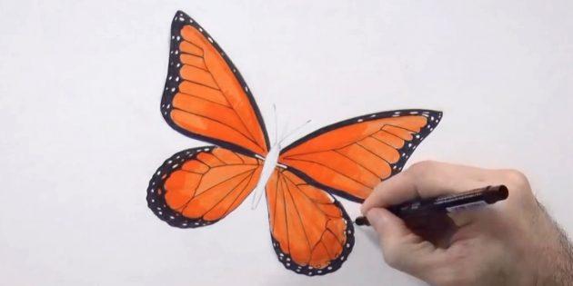 Закрасьте нижние края малых крыльев и обведите чёрным узор