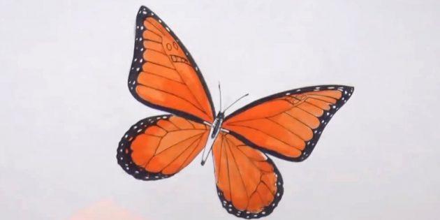 Ympyrän vartalo perhosia ja monipuolinen kuvio siivet