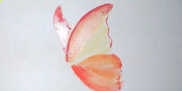 Khoanh tròn các đường viền của cánh trên và vẽ một bên trái khác