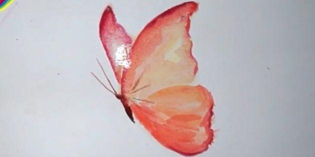 Проведите тёмные штрихи от основания туловища, затемните тельце и закрасьте жёлтым часть заднего крыла