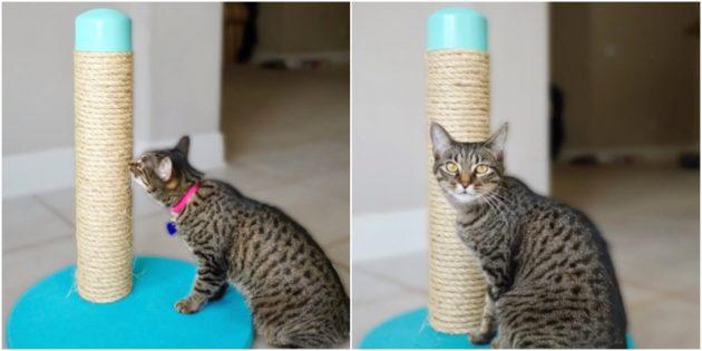 Hoe maak je een rem uit de pijp met je eigen handen