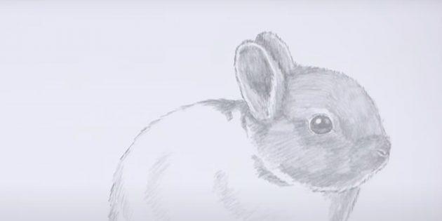 Sådan tegner du en kanin: Strike Head