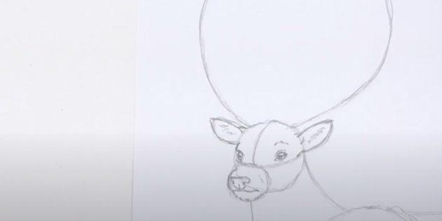 Miten tehdä hirvieläin: Piirrä suusi ja yksityiskohtaiset korvat