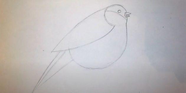 Begynn å tegne hale
