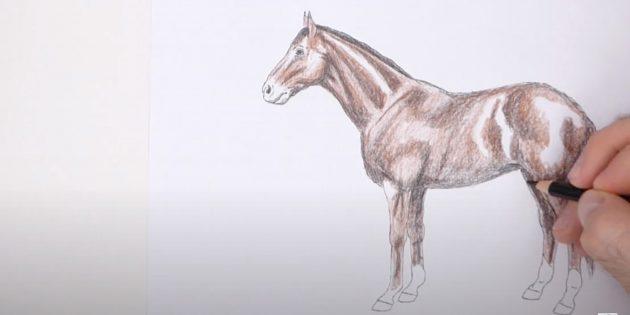 Hoe een paard te tekenen: voeg zwarte en lichtbruine kleuren toe