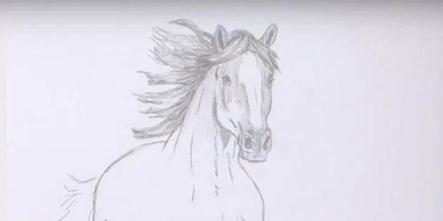 Hoe een paard te tekenen: snijd de manen en het hoofd