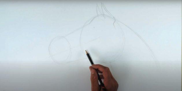 Hoe een paard te tekenen: noteer de nek en oren