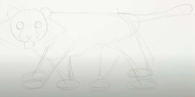 Жолбарысты қалай сурет салу керек: үш шеңбер сызыңыз