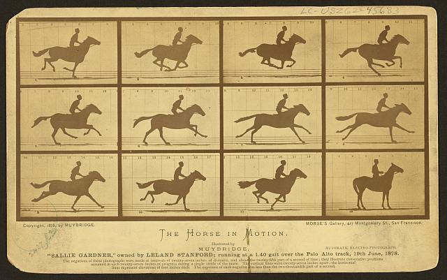 """The horse in motion, illus. by Muybridge. """"Sallie Gardner,"""" owned by Leland Stanford, running at a 1:40 gait over the Palo Alto track, 19 June 1878: 2 frames showing diagram of foot movements"""
