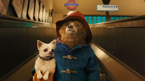 paddington bear kaufen # 25