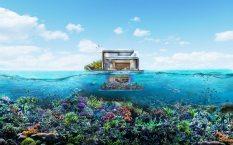 floating-seahorse-signature-edition-eau