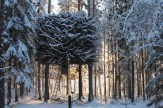 Treehotel (22)_Luxe