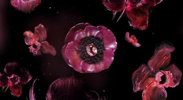 Boucheron : La beauté éphémère immortalisée