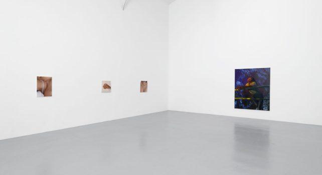Intimités Contrariées : La Galerie Hussenot rassemble trois artistes de renom pour une exposition unique