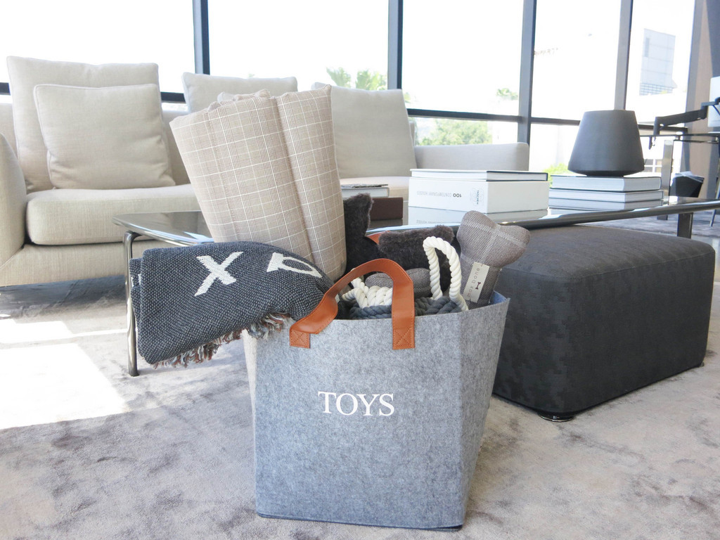 10 Dog Toy Storage Ideas That Will Make Your Pup Smile