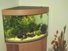 Aquarium-Neu-03