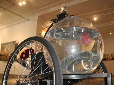 Fish-Bike-Terranaut-Seth-Weiner
