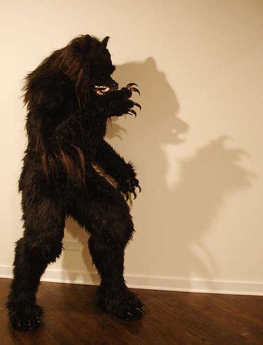 werewolf-halloween-costume102507.jpg