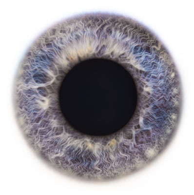 Eye Scapes - 15