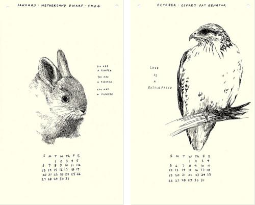 bunnyhawk.jpg