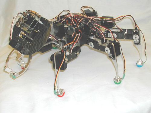 md-BILL-Ant.jpg