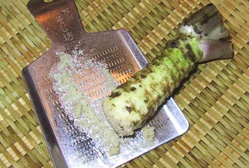 wasabi_horseradish.jpg