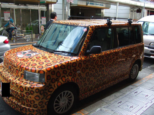 catprint_car1.jpg