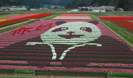 tulip-panda.jpg