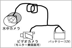 ccd25.jpg