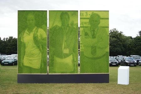 Hsbc-Grass-Artwork