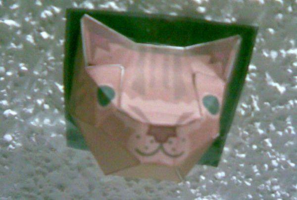ceiling cat photo.jpg