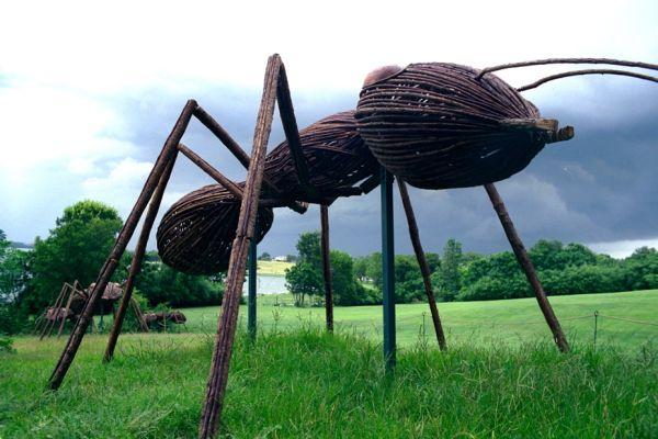 big bugs ants.jpg