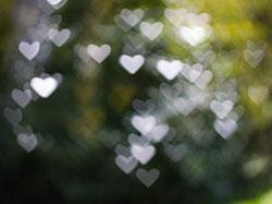 bokeh_hearts.jpg