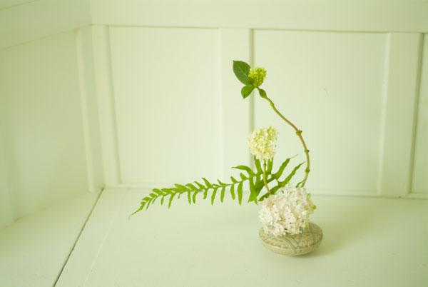 Ikebana_023_opener.jpg