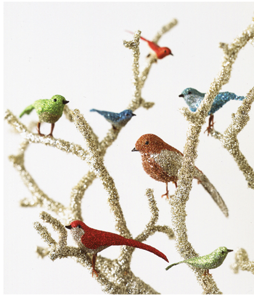 Finishedbirds